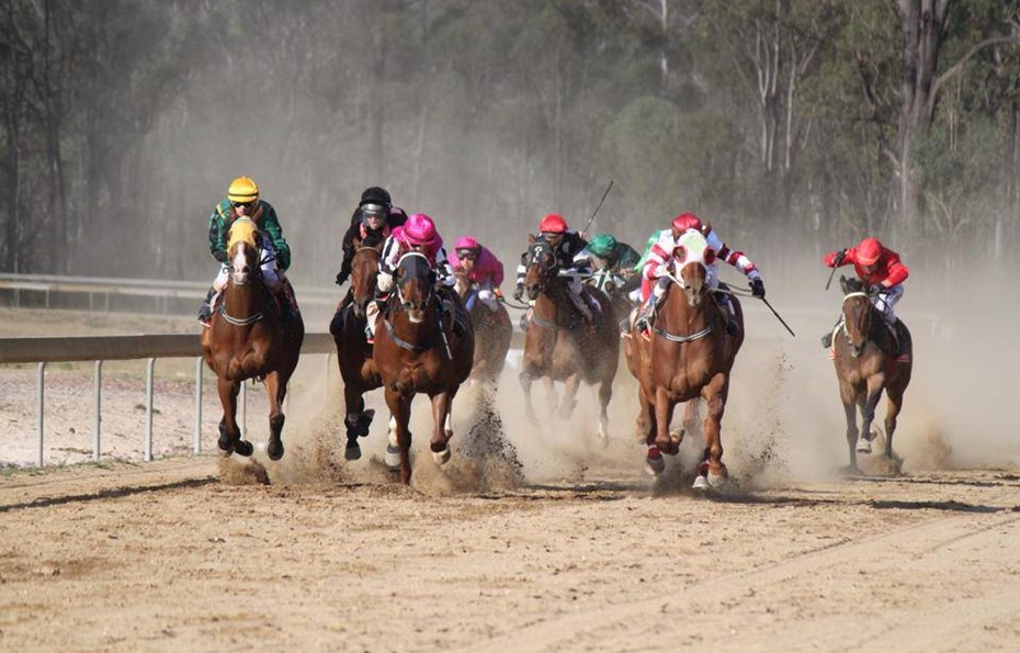 South Burnett Race Club - Wondai
